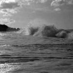 Surf in Hillsborough Bay.