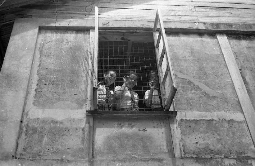 Carol Stewart, Laurel Martineau & Bernice Davidson
