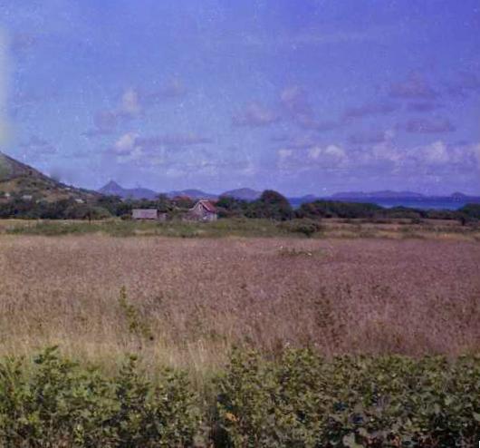 Field Crops Around Limlair.